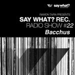 Say What? Recordings Radio Show #22 - Bacchus